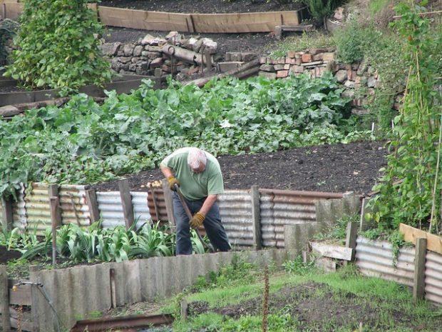 Création lit surélevé pour jardin