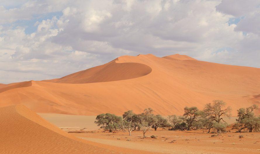 Top3 des raisons pour faire de la Namibie sa prochaine destination